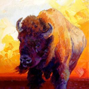 Buffalo-Study-7x5