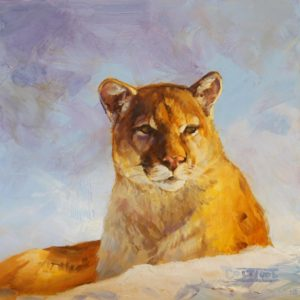 Mountain-Lion-Study-6x6