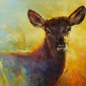 Cow-Elk-Study-8x10-colt-idol