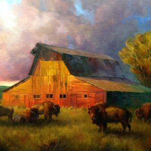 buffalo-junction-24x30-colt-idol